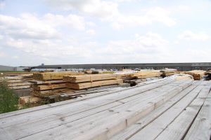Auction Timber Stocks